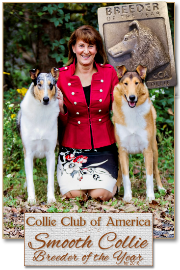 CCA Smooth Collie Breeder of the Year 2016